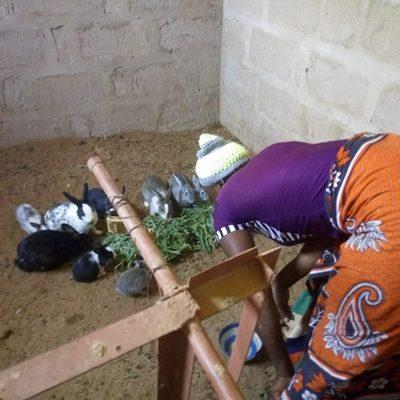 Mariam Jonas füttert ihre Kaninchen