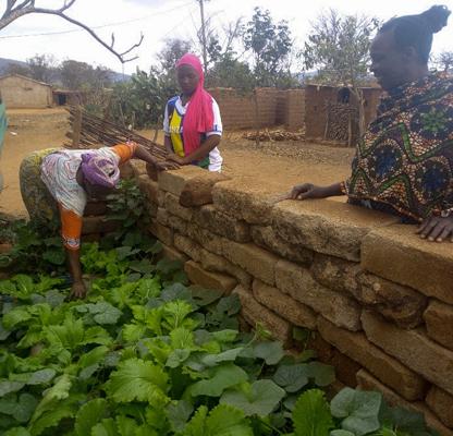 Nachbarn besuchen Mary Milambo in ihrem Gemüsegarten