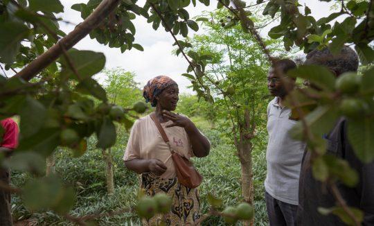 Eine Frau erklärt die auftrendenen Probleme auf ihrer Farm