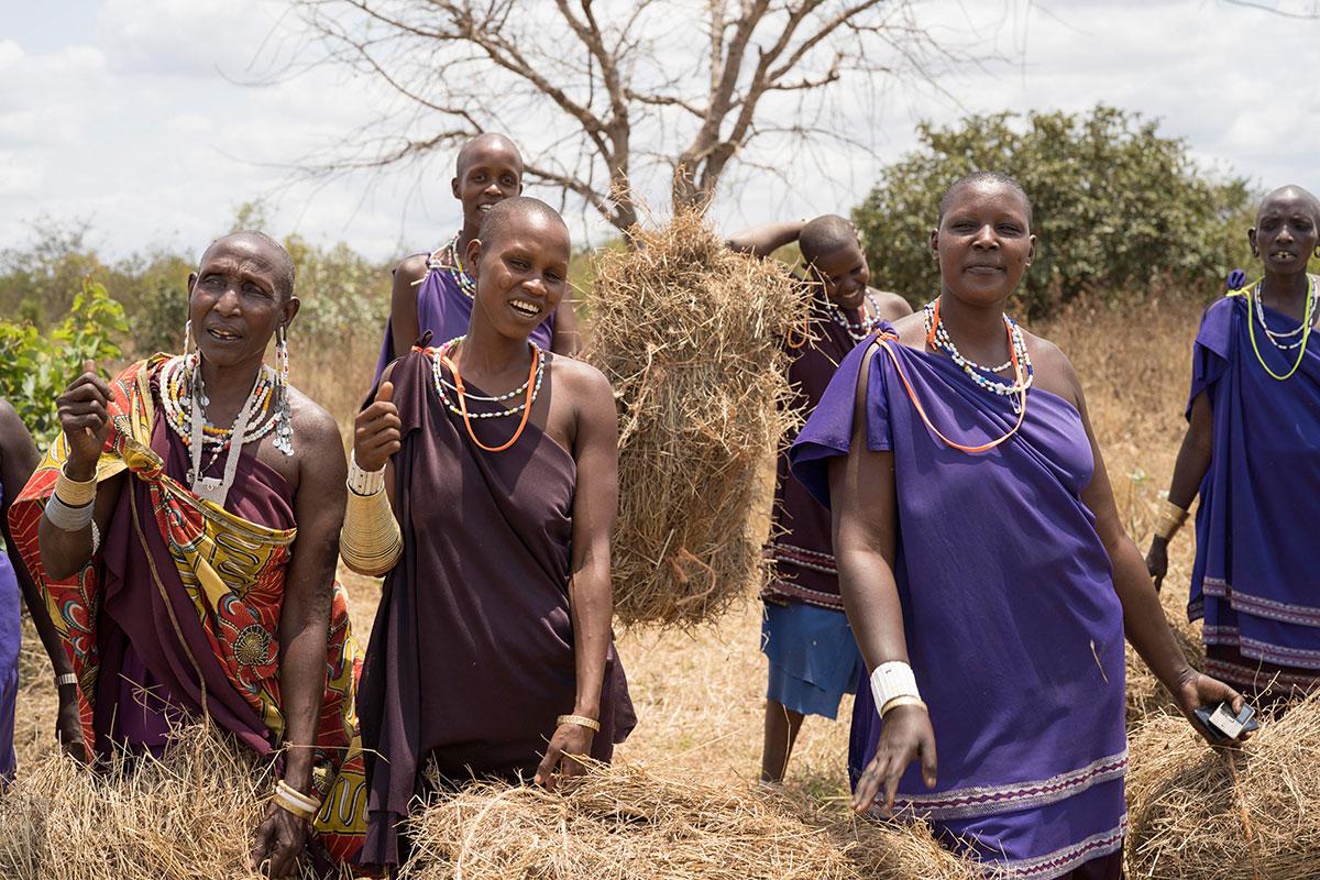 Masai-Frauen mit vor Heuballen