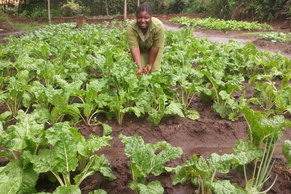 SAT-Mitarbeiterin steht im Gemüsefeld